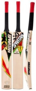 Spartan CG Authority, Top 10 Best Cricket Bats in the world